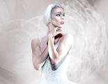 Swan_Lake_Image sm